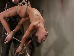 Lyla Storm enjoys being bound and tortured in a basement